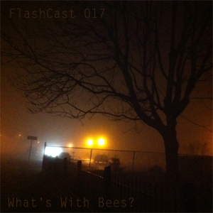 FC017 - What's With Bees?