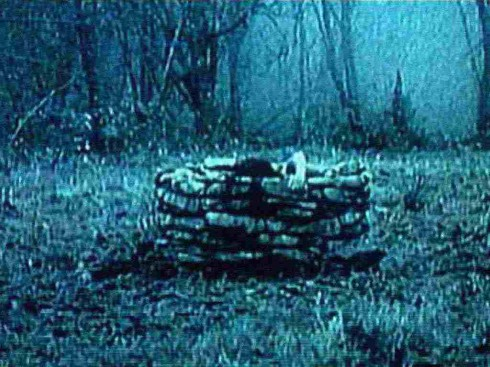 Still from the videotape featured in The Ring