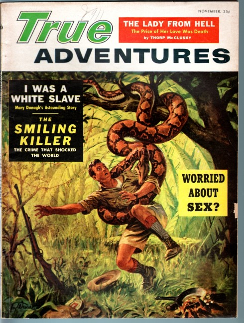 True Adventures Pulp Cover